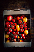 Tomato in a Box