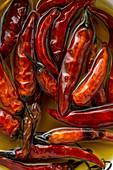 Getrocknete Chilischoten in Öl eingelegt