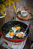 Beet leaves with eggs