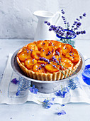 Tart with caramelized apricots and lavender flowers