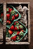 Frische Erdbeeren in Pappschälchen auf Holztablett