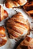 Frisch gebackene Croissants auf Backpapier (Aufsicht)