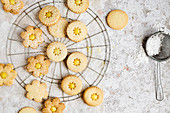 Linzer cookies dusted with powder sugar
