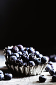 Dark shot of organic blueberries with negative space