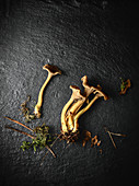 Directly above view of chanterelles against black background