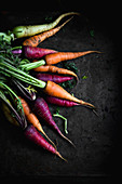 Multi coloured carrots on a dark background