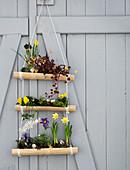 Selbstgemachte Blumenampel aus Bambus mit Frühlingsblumen am Scheunentor