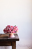 Heap of delicate pink flowers placed on dessert plate on old table against white wall