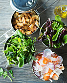 Various salad ingredients (herbs, lettuce, carrots, radishes, croutons)