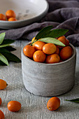 Fresh kumquats in a grey ceramic bowl