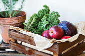 Kale, red cabbage, red apples and rosemary in a wooden crate
