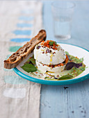 Spiced mozzarella with cold cucumber dressing