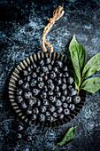 Fresh blueberries on a dark blue background