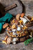 Stilleben mit gemischten Pilzen in einem Drahtkorb