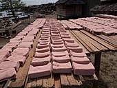 Sago cake drying in the sun,Indonesia