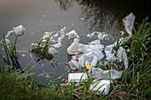 Plastic garbage in waterway.
