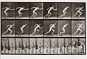 Man running, Plate 59 from Animal Locomotion, 1887