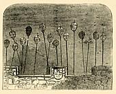 Heads on Old London Bridge, c1872