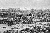 The cotton market at Bombay, India, 1895