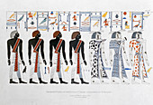 Hieroglyphics from the Tombs of the Kings at Thebes