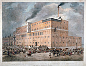 Westminster Ale and Porter Brewery, London, c1840