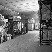 Workers in a cold store, 1973