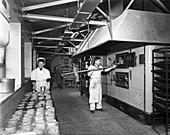 Pork pie production, Rawmarsh, South Yorkshire, 1955