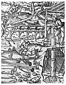 Making and using elm tree pumps to drain mines, 1556