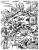 Prospecting for metals, 1556