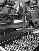 Working on a Drillmax machine, 1964