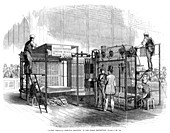 Vertical printing machine, Great Exhibition, London, 1851