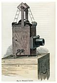Thomson's Lantern'