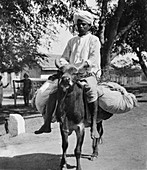 The laundry man, India, late 19th or early 20th century