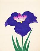 Yedo-Jiman, No 36, 1890, colour woodblock print