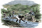 Panning for gold during the Californian Gold Rush of 1849
