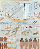 Wall painting from a private tomb of Kaemankh, III, 295