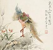 A phoenix standing on a rock, 1857