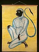 Hanuman, the monkey god, c1870