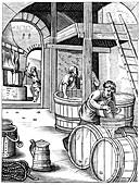 Brewer, 16th century