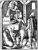 Miller, 16th century