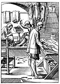 Tailor, 16th century