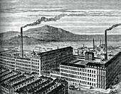 York Street Mill, Belfast, c1880