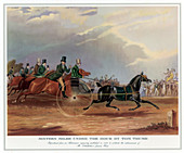 Sixteen Miles Under the Hour by Tom Thumb, 1831