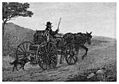 A Colac Rabbit Trapper, 1886
