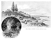 The first landing place, Botany Bay, Australia, 1886