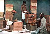 Packing and weighing tea for export on a Ceylon estate, 1905