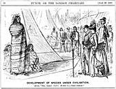 George du Maurier cartoon illustrating Darwinism, 1887