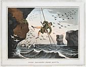 Bird Catching from Above', Shetland Islands, 1813