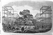 Building in Hyde Park, London for the Great Exhibition, 1851