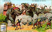 The Elephants of Pyrrhus, c1900